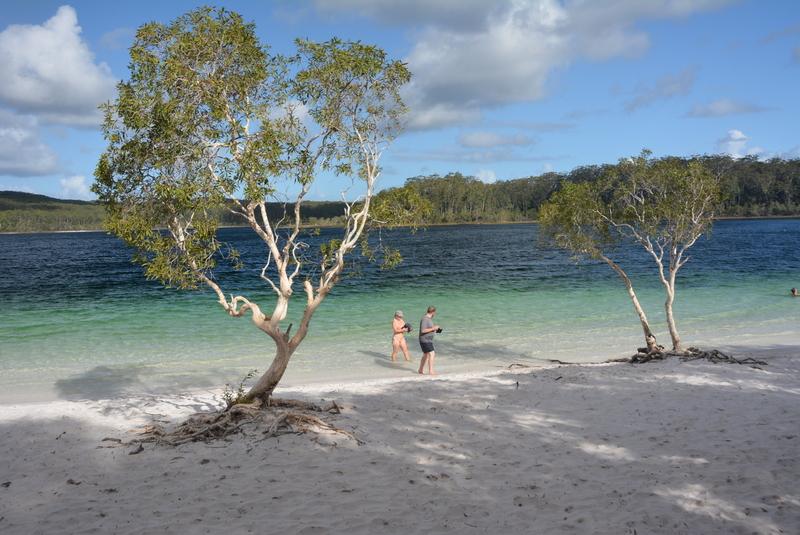 Frazer Island